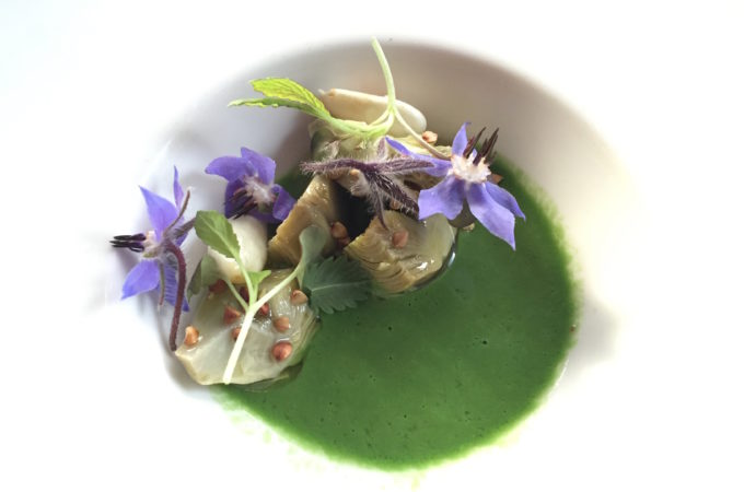 borage soup at sons and daughters